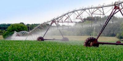 Desafíos del sector agrícola, ganadero y forestal en Chile