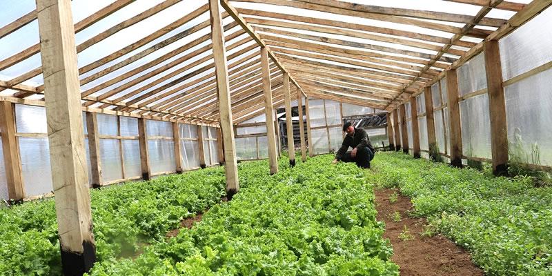 Indap entrega recursos a pequeños agricultores de Aysén