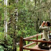 Analizan avances del turismo sustentable en el mundo