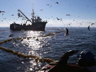 Proyecto que protege pesca artesanal es realidad